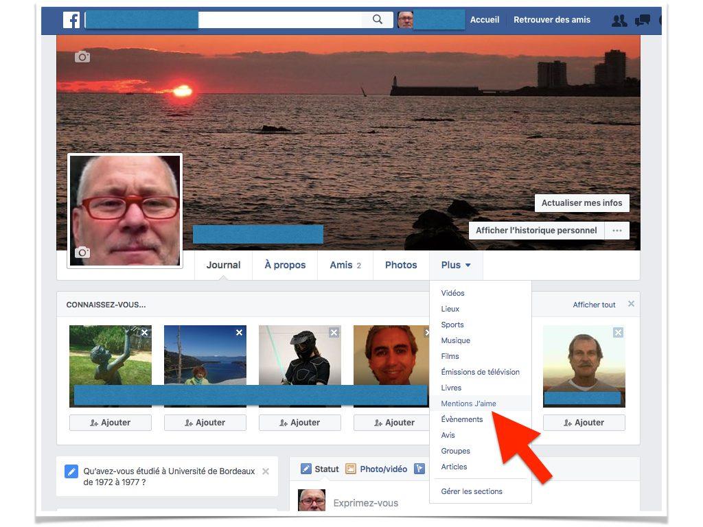 Facebook Qui peut voir mes mentions J'aime.003